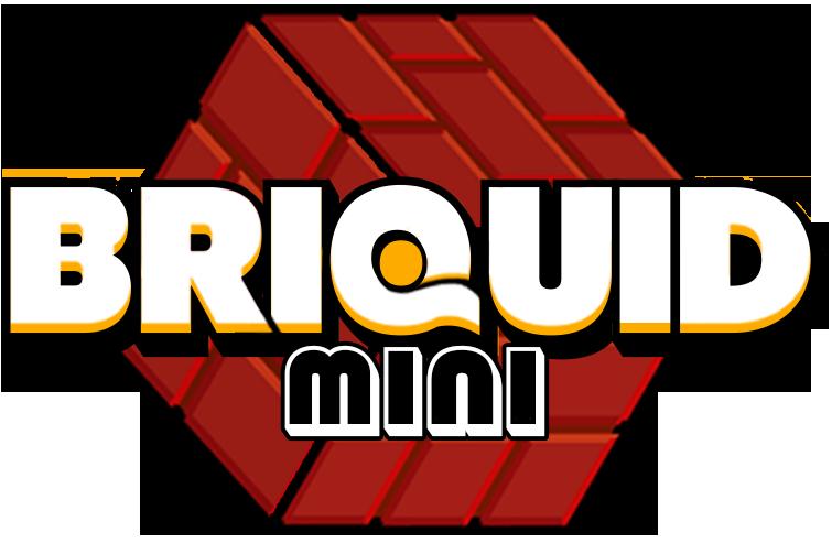 Briquid Mini review(Mobile)
