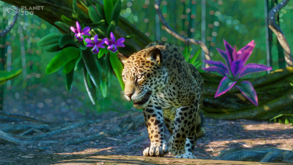 Planet Zoo South America Pack DLC review(PC)